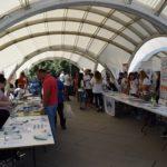 Невладиниот сектор раскажа приказни за позитивни промени на Денот на граѓански организации (Видео)